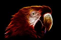 Fractals Macaw Ara Στοκ εικόνες με δικαίωμα ελεύθερης χρήσης