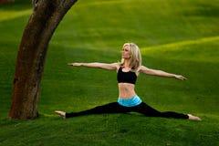 Fractionnements de yoga en stationnement Photos stock