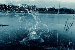 Fractura del hielo Fotos de archivo libres de regalías