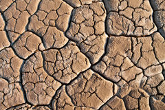 The fracture of lines in soil Stock Photography