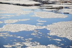Islands of ice on still river water. Fractured, merging and separating sections of icy bits float down stream together. Blue liquid water divides their transport stock photo