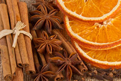 Fragant kryddor på jutebakgrund Royaltyfri Fotografi