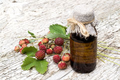 Fragaria viridis with berries and pharmaceutical bottle. Medicinal plant Fragaria viridis with ripe berries and pharmaceutical bottle on old wooden table. In stock photography