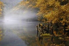 Fragas eume河在秋天, Coruña,西班牙 免版税库存照片