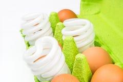 Fragile aspect of modern twisted lightbulbs Stock Photography