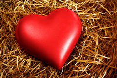 Fragile Heart Royalty Free Stock Photos