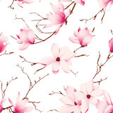 Fragile magnolia flowers seamless vector pattern Stock Images