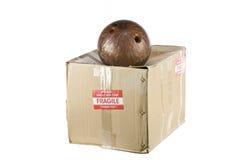 Fragile shipping box concept isolated on white stock photos