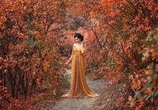 A girl in a vintage dress. A fragile, tender girl in a yellow vintage dress strolls against the background of fiery autumn nature. Artistic Photography stock image