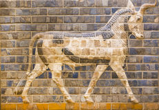 Fragment of ancient frescoes Stock Photography