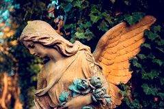 A fragment of ancient sculpture angel in a golden glow in the old cemetery. Symbol of love, invisible forces, purity,. Enlightenment, ministry. Chariot stock photos