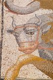 Antique mosaic in Dion. Pieria, Greece Royalty Free Stock Photography