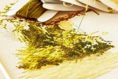 Fragment av broderi i guld--gräsplan signaler Royaltyfri Foto