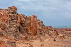 Fragment av den förstenade skogen på udde Bridgewater, Victoria, Australien Arkivfoton