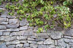Fragment av den gamla gråa stenväggen som göras av olik form och siz royaltyfri fotografi