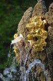 Fragment av en springbrunn med mascarons Arkivfoton