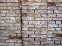 Fragment av en vägg av en gammal röd tegelsten med den vita beläggningen Arkivfoton