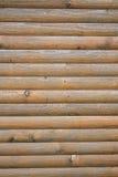 Fragment av foderväggen vid trä, specificerad struktur, bakgrund Arkivfoto