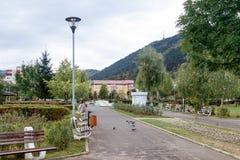 Fragment av parkera av rosor i staden av Brasov i Rumänien Arkivbild