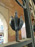 Fragment av smidesjärnliljor av portarna av byggnaden royaltyfri fotografi