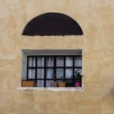 Fragment av tappningväggen med det trevliga gnisslande fönstret och lade in blommor avivisrael telefon Royaltyfri Bild