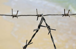 Fragment of the barbed wire fencing Stock Photos
