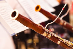 Fragment bassoons Royalty Free Stock Images