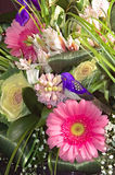 Fragment of beautiful bouquet Royalty Free Stock Photos