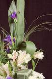 Fragment of beautiful bouquet Royalty Free Stock Images