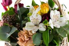 Fragment of Beautiful bouquet Stock Photos