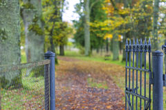 Fragment of beautiful decorative fence in autumn park Stock Photo