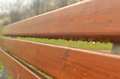 Fragment of bench Royalty Free Stock Photos