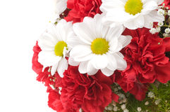 Fragment of a bouquet Royalty Free Stock Photos