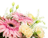 Fragment of bouquet from gerbera and carnations isolated on whit Royalty Free Stock Photography