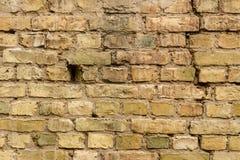 Fragment of a brick wall Royalty Free Stock Image
