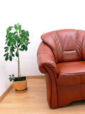 Fragment of brown armchair Stock Photo