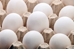 Fragment of carton of fresh eggs Royalty Free Stock Images