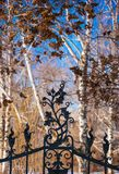 Fragment of a cast-iron fence Royalty Free Stock Photos