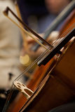Fragment Cello. Fiddlestick on the strings of the cello closeup Royalty Free Stock Photography