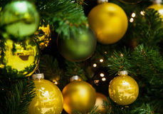 Fragment of a Christmas tree Stock Photography