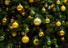 Fragment on a Christmas tree Stock Photos