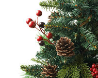 Fragment of a Christmas tree isolated Royalty Free Stock Photography
