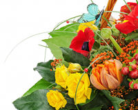 Fragment of colorful bouquet isolated on white background. Royalty Free Stock Images