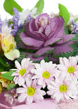 Fragment of Colorful Flower Bouquet  on White Background Royalty Free Stock Photo