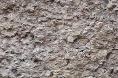 A fragment of a concrete wall Royalty Free Stock Photo