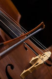 Fragment contrabass Stock Photography