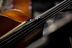 Fragment of contrabass Royalty Free Stock Photo