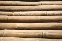 fragment de ?bamboo Photographie stock libre de droits