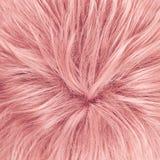 Fragment de cheveux comme composition en fond Photo libre de droits