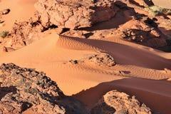 Fragment de dune de sable Photographie stock